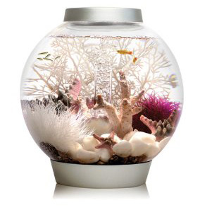 9. biOrb Aquarium Kit with LED Light Fixture