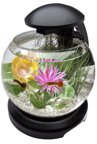 8. Tetra 1.8 Gallon Waterfall Globe Aquarium Kit