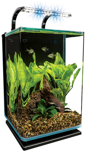 10. Marineland Contour Glass Aquarium Kit with Rail Light