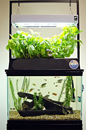 1. ECO-Cycle Aquaponics Kit w/ Dual T5 Grow Light, Best Aquaponic Systems Reviews