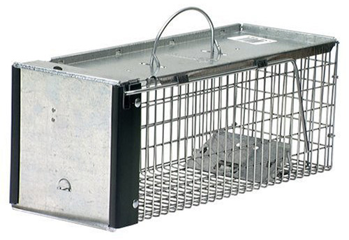 #3. Havahart X-Small Professional Style One-Door Animal Trap