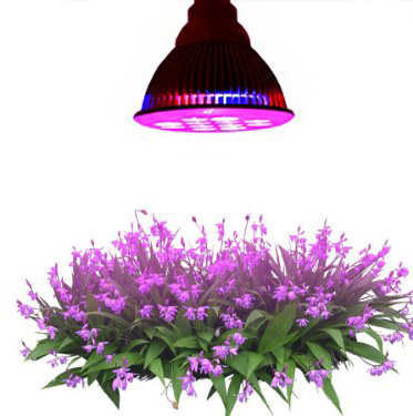 #1. Highest Efficient Hydroponic LED Grow Light
