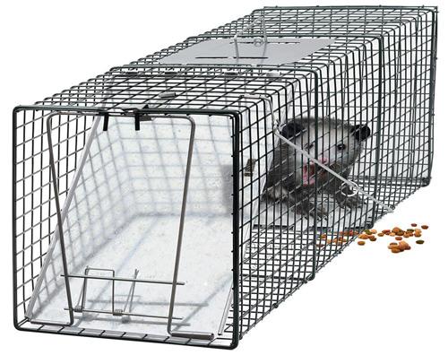 #1. OxGord Live Animal Trap 24 X 7 X 7