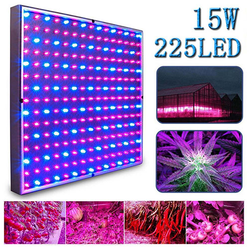 4. Kaleep LED Grow Light for Red Blue Indoor Garden Greenhouse and Hydroponic Full Spectrum Growing Lamps 15W Hanging Light